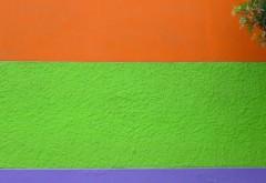 ściana pomalowana na pomarańczowo, zielono i granatowo