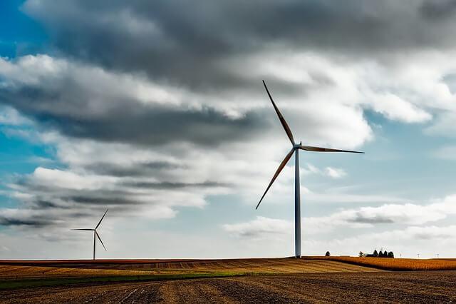 wiatraki na polu